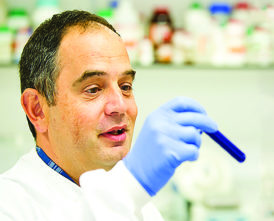Validation of a plasma extracellular vesicle miRNA (EV-miRNA) diagnostic signature for lung cancer